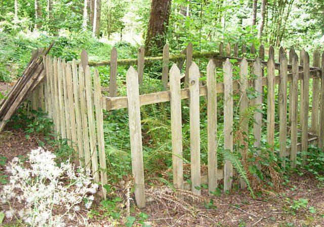Holly Cemetery, Holly